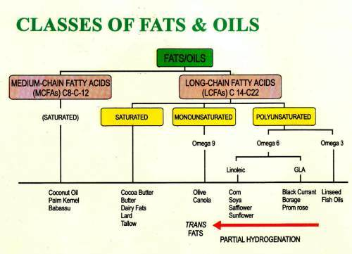 Types Of Food Containing Saturated Fats